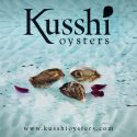 Kusshi Oysters featured on an ocean canvas